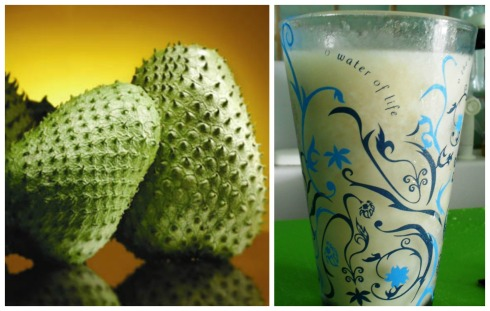 Jugo de Guanabana Collage